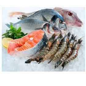 Fisk,Räkor & Skaldjur