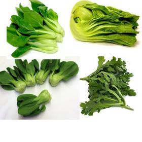 Grönsaker Holland